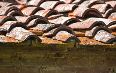4 Warning Signs Your Roof Is Nearing the End of Its Useful Life